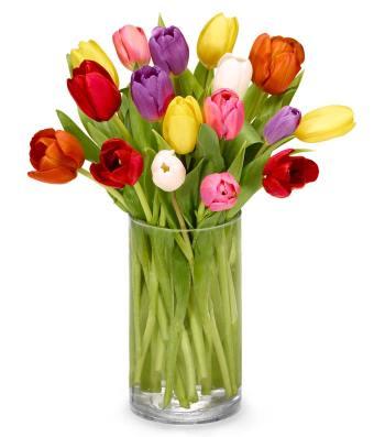 Easter tulip bouquet