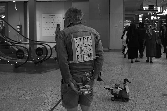 """En smart man som är tekniskt begåvad samlar in pengar till projektet """"Stöd hungriga ejdrar"""". Han samlar in pengarna med hjälp av en radiostyrd fågel som rullar runt på fyra hjul i Nordstan i Göteborg. Foto: Peter Ahlborg"""
