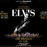 """""""Elvis – The Wonder of You"""" – till Sverige 2018"""