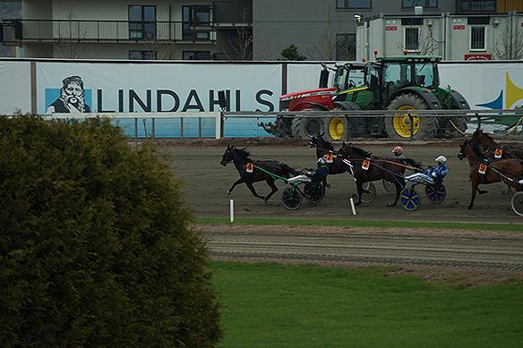 Hästen Ringostarr Treb leder Olympiatravet 2018 från start till mål. Här mindre än ett varv kvar. Foto: Peter Ahlborg