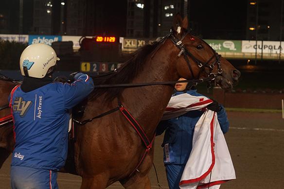 """Fina hästen treåringen """"Stand By Ken"""" här efter vinsten på Åbytravet den 7 november 2018"""