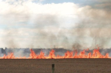 A wall of wildfire showing the towers and troughs typical in a flame front