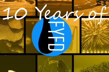 10 Years of FYFD Collage.