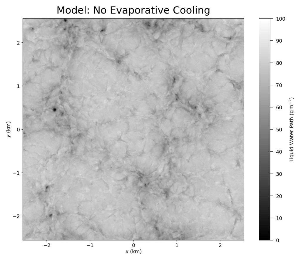 Running the simulation without evaporative cooling results in no spiderwebs.