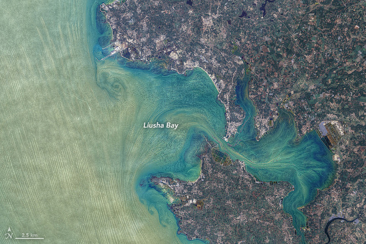 False-color satellite image of Liusha Bay.