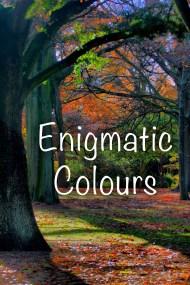 06_Enigmatic_Colors copy