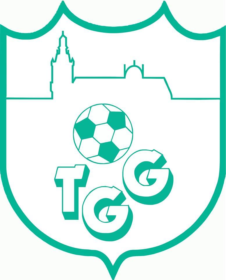 TGG Fysio 4 Den Bosch