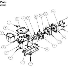 Hayward Pool Pump Wiring Diagram For Trailer Tail Lights Filter Drain Plug Free Engine Image
