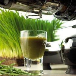 Wheatgrasses, kale, cabbage, spinach, and pine tree needles are just some of the natural products that can be juiced with the Omega 8006 Nutrition Center. Enjoy the best that nature offers in raw foods of all kinds and juice them for full nutritional benefits.