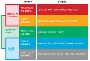 How Heart Rate Training Works