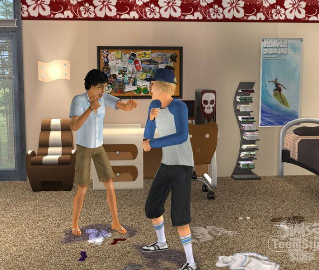 The Sims 2 Teen Style Stuff Pc Video Games