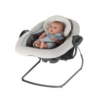 Amazon.com : Graco DuetConnect LX Swing + Bouncer, Manor ...