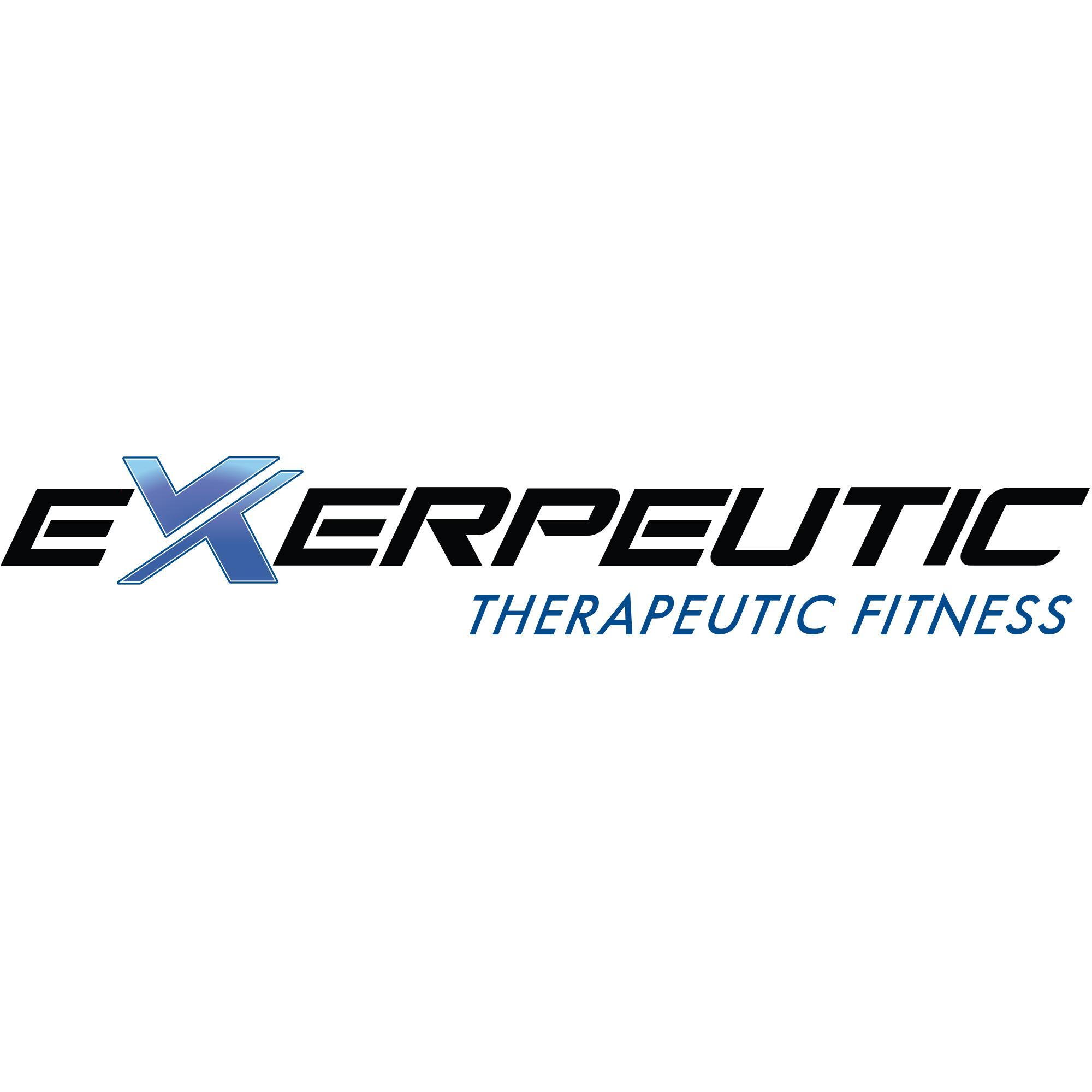 Amazon.com : Exerpeutic 2000 WorkFit High Capacity Desk