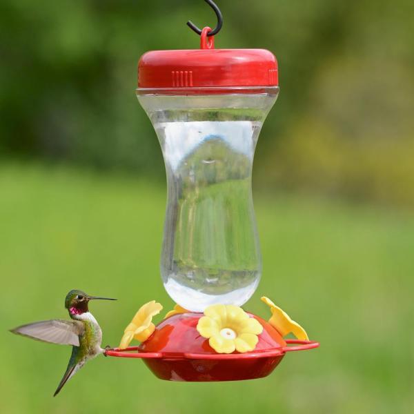 Perky-pet 131tf 16-ounce Glass Top Fill Hummingbird Feeder Wild Bird Feeders
