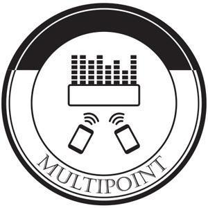 Amazon.com: LG Electronics Music Flow P5 Portable