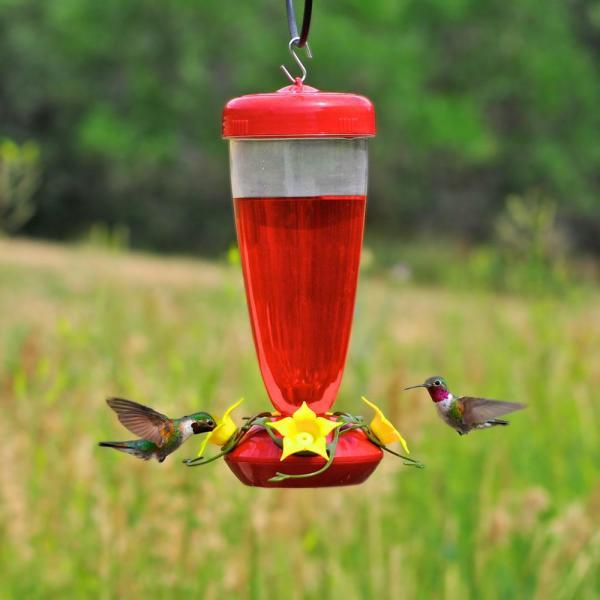 Perky-pet Aster Top Fill 24 Oz. Hummingbird Feeder