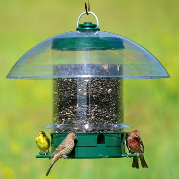 Perky-pet -feeders -351 Super Carousel Wild Bird Feeder Patio Lawn & Garden