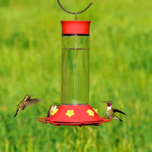 Perky-pet 209b Glass Hummingbird Feeder With Free Nectar Wild Bird