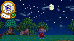 Night time fun under the stars in 'Animal Crossing: City Folk'