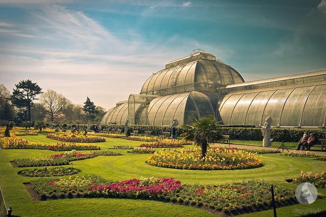 حديقة في لندن
