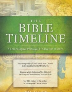 Great adventure bible timeline chart by jeff cavins sarah christmyer also rh christianbook