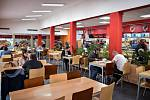 Company catering, dining room, lunch.  illustrative photo