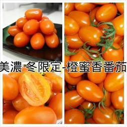 自產自銷無毒栽種-橙蜜香小番茄 (5斤裝) - 露天拍賣