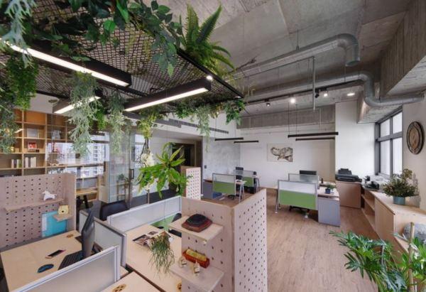 微自然新竹裝潢設計│新竹室內設計師的森林系辦公空間! - 河貍的居家修繕裝潢園地 - udn部落格