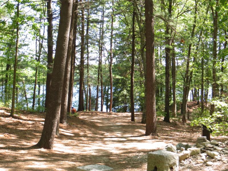 Walden Pond - 華爾騰池, 梭羅的湖濱散記 - amychu 的網誌 - udn部落格