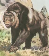 「步氏巨猿」(Gigantopithecus blacki,又名「爪哇金剛」(King Kong Java - HSR123 的部落格 - udn部落格