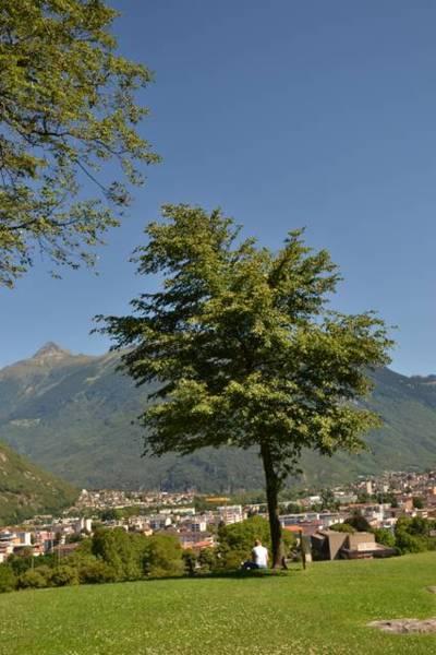 瑞士趴趴走之古城堡之城Bellinzona - 肉圓媽之就是愛親子旅遊 - udn部落格