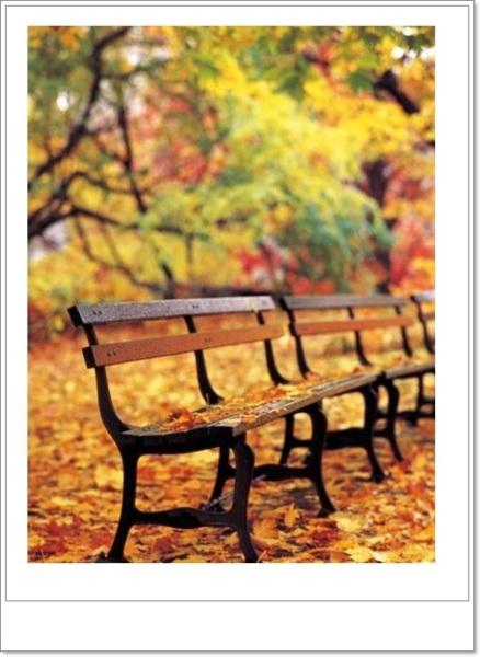 浣溪沙--落葉歸根 - yun13651清風明月 的部落格 - udn部落格