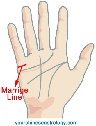 palmistry diagram marriage line dayton drum switch wiring palm reading guide chinese also relationship or affection mainly reflects the situation of your life love time as well