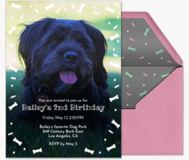 Baileys Birthday Invitation