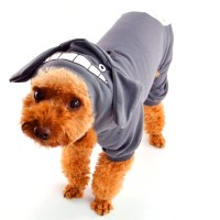 Popular Xxs Dog Costumes-Buy Cheap Xxs Dog Costumes lots ...