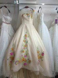 Cinderella Wedding Dresses