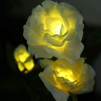 Online Buy Wholesale solar magic garden lights from China ...