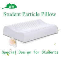 Latex Pillow Best Design for Students Message Pillow Latex ...