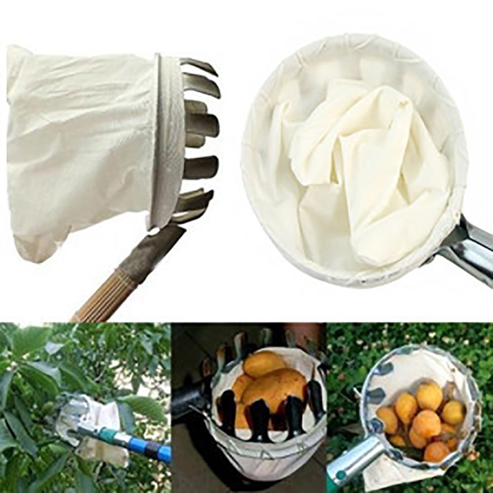Dhorse poda herramienta para fruta jardín selector hortícola ...