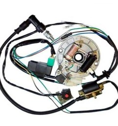all electrics 50 70 110 125cc 140 wire harness cdi coil dirt bike stator [ 1000 x 1000 Pixel ]