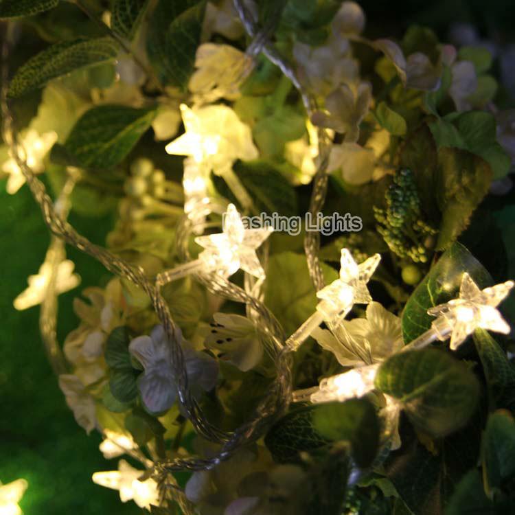ᓂ3 M 24 LED guirlandes lumineuses étoiles Batterie Exploité