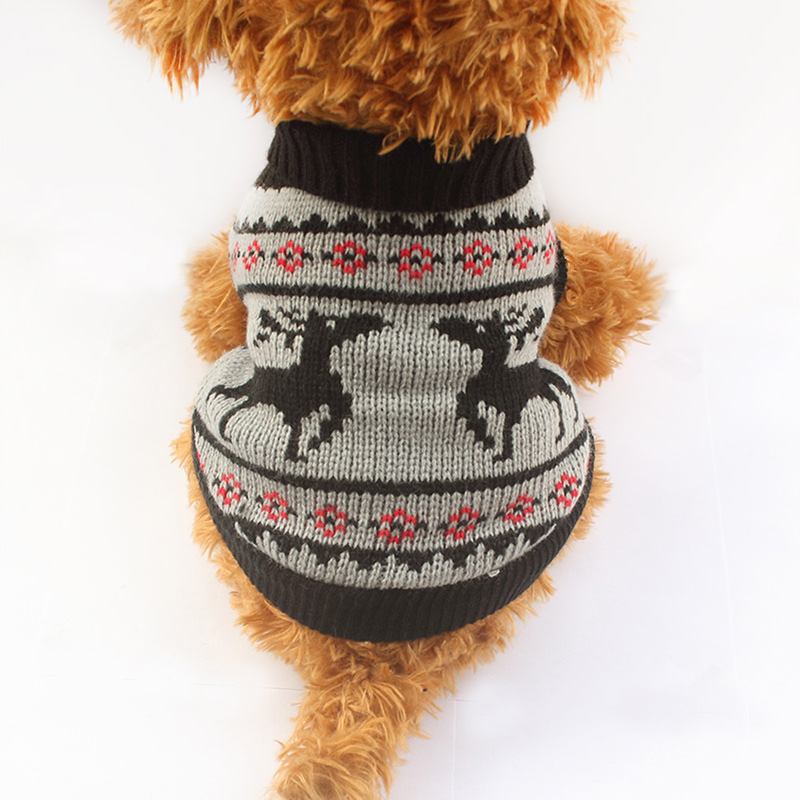 Pet Clothing Stores Promotion
