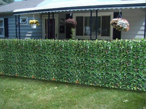 Fire Resistant Photinia Hedge Artificial Plastic Fence