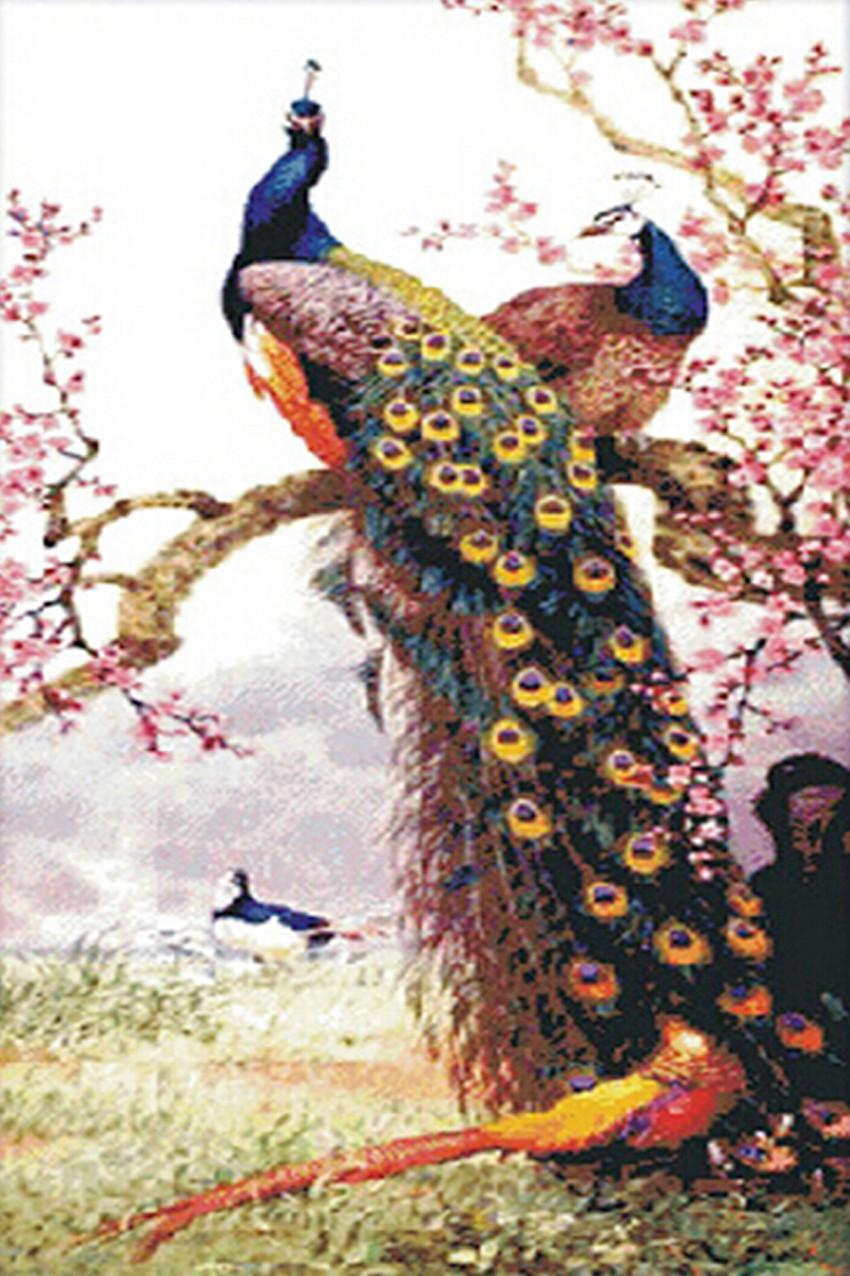 ᓂFlor de Pavo Real Animal Patrón de punto de Cruz Bricolaje 5d ...