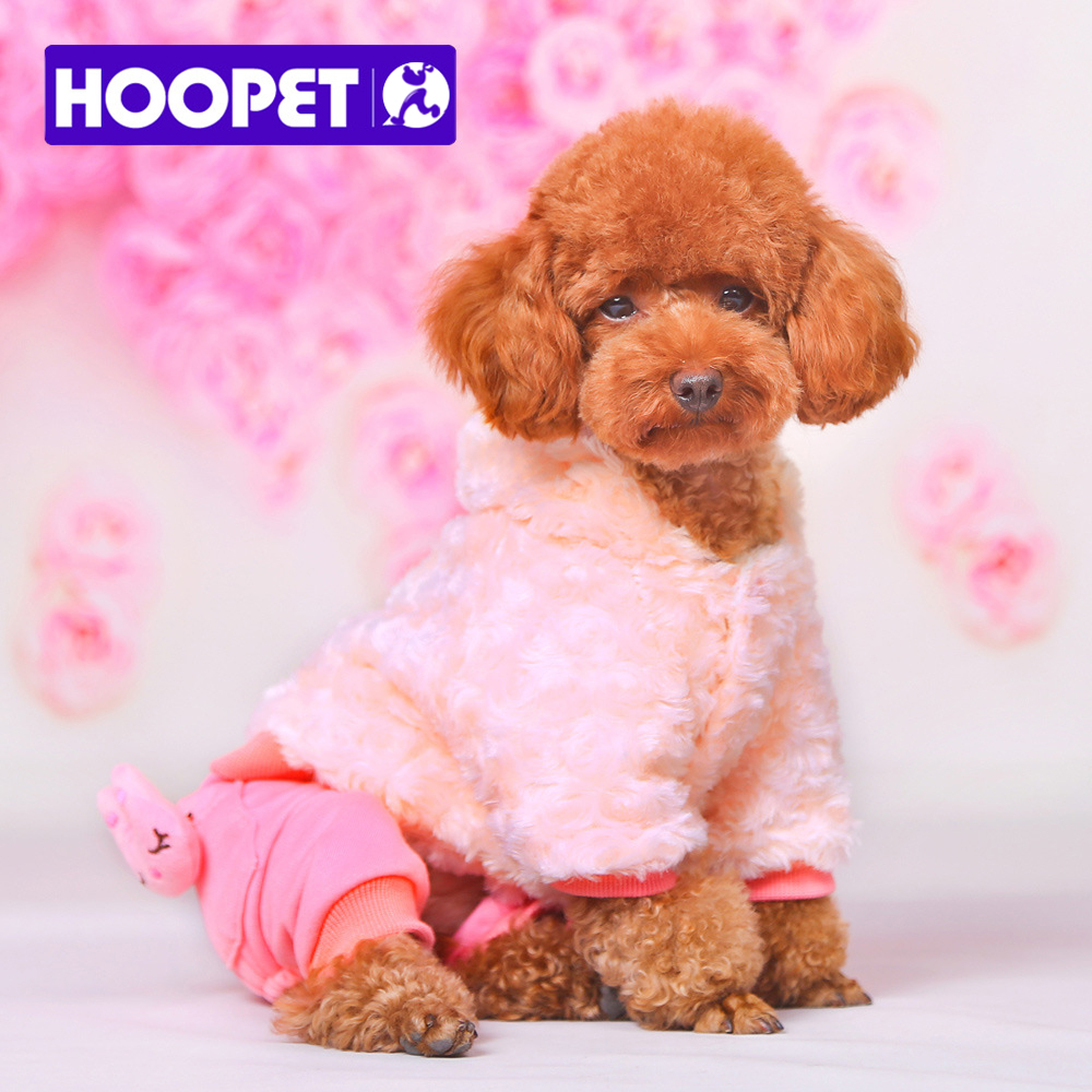 Aliexpress.com : Buy HOOPET dog clothes winter cute girl