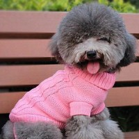Popular Cable Knit Dog Sweater
