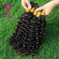 8A Human Braiding Hair Bulk Malaysian Kinky Curly Virgin ...