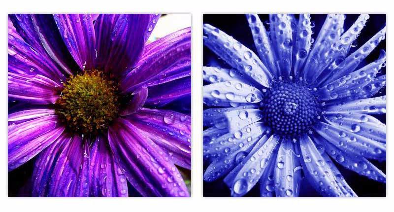 ⓪Sin marco 2 paneles 3d flores Impreso Pintura Al Óleo Sobre Lienzo ...