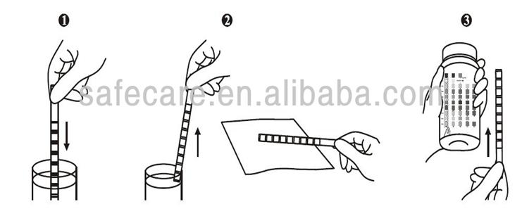 In Vitro Diagnostic Urinalysis Reagent Test Strip 11