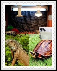 Infrared Ceramic Heat Lamp For Animals - Buy Infrared ...